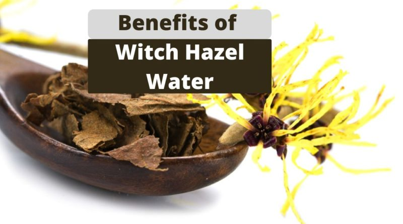 Benefits of Witch Hazel Water